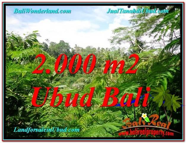 TANAH MURAH JUAL di UBUD BALI 20 Are View Tebing lingkungan Villa