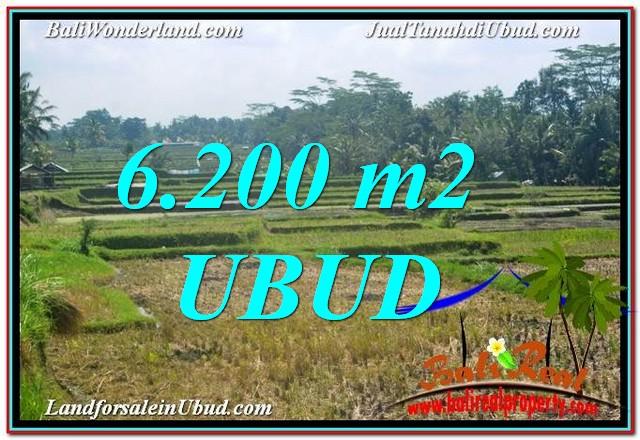 DIJUAL TANAH di UBUD Untuk INVESTASI TJUB631