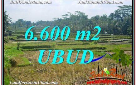 TANAH di UBUD DIJUAL MURAH 64 Are di Ubud Payangan