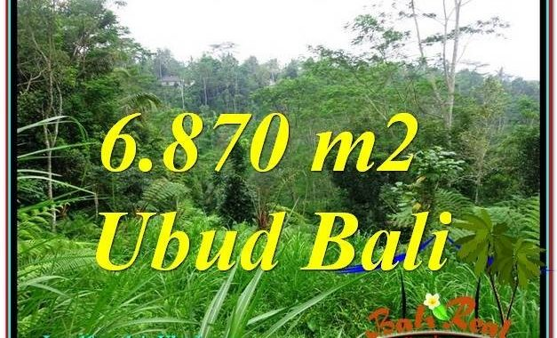 DIJUAL TANAH MURAH di UBUD TJUB602