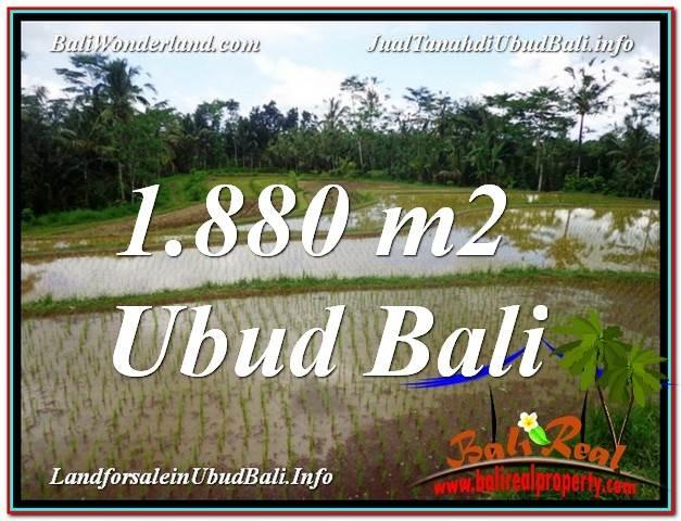 TANAH MURAH DIJUAL di UBUD BALI Untuk INVESTASI TJUB613