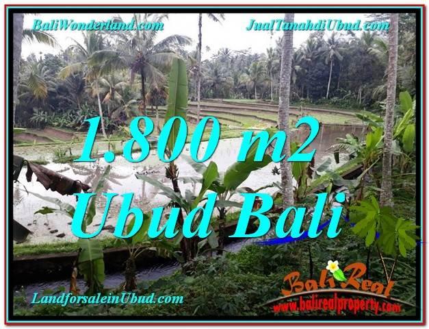 TANAH MURAH di UBUD BALI 18 Are di Ubud Tampak Siring