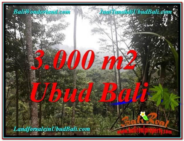 JUAL MURAH TANAH di UBUD BALI 3,000 m2 View Tebing