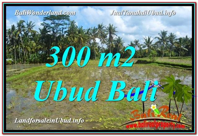 TANAH MURAH DIJUAL di UBUD 3 Are di Ubud Pejeng