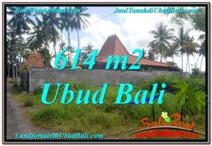 TANAH MURAH di UBUD BALI 614 m2 View kebun lingkungan Villa