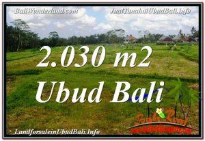 JUAL TANAH MURAH di UBUD TJUB623