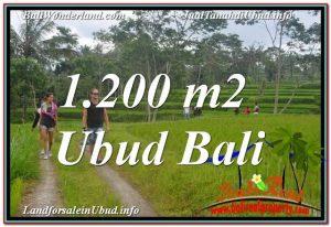 TANAH di UBUD DIJUAL 1,200 m2 di Ubud Tegalalang