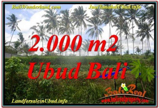TANAH MURAH DIJUAL di UBUD BALI 2,000 m2 di Ubud Pejeng
