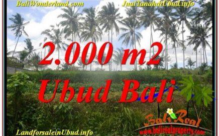 DIJUAL TANAH di UBUD Untuk INVESTASI TJUB625
