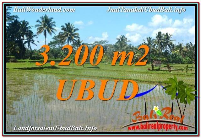 TANAH MURAH di UBUD BALI 3,200 m2  View Sawah dan Gunung Batur