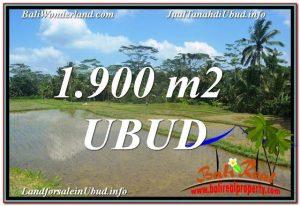 TANAH MURAH JUAL di UBUD BALI 1,900 m2  View Sawah dan Sungai