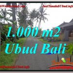JUAL MURAH TANAH di UBUD 1,000 m2 di Ubud Pejeng
