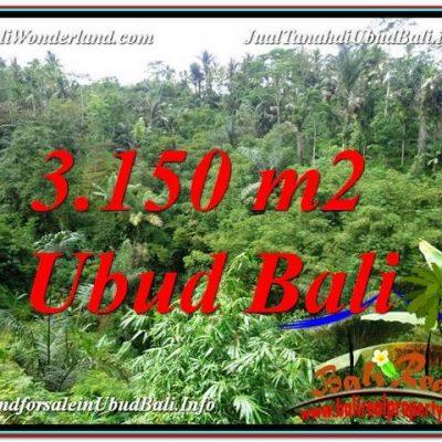 TANAH DIJUAL MURAH di UBUD BALI Untuk INVESTASI TJUB608