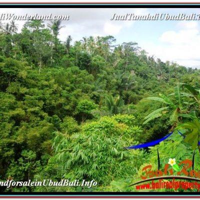 JUAL TANAH di UBUD BALI 32 Are View Tebing dan Sungai