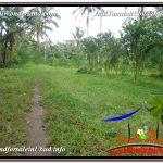 TANAH MURAH JUAL UBUD 56 Are View Tebing dan kebun