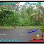 TANAH di UBUD DIJUAL 1,400 m2 di Ubud Tegalalang