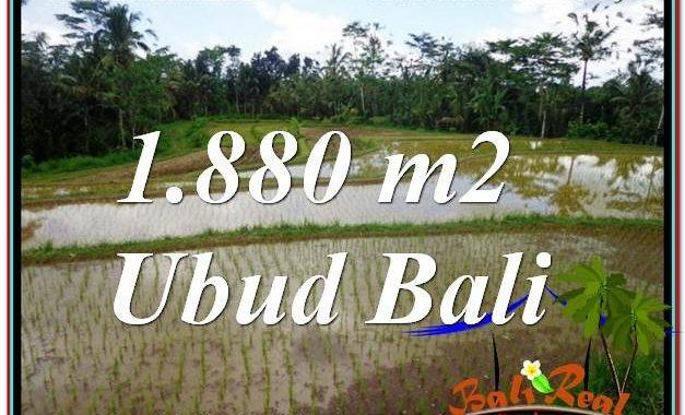 TANAH MURAH DIJUAL di UBUD BALI 1,880 m2 di Ubud Tegalalang