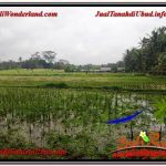 TANAH di UBUD DIJUAL MURAH Untuk INVESTASI TJUB615