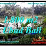 JUAL TANAH di UBUD 18 Are View Sawah