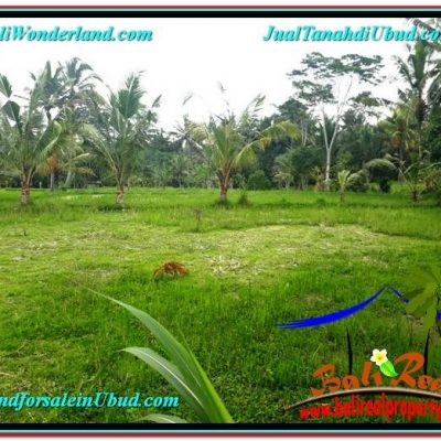 TANAH MURAH di UBUD BALI 1,800 m2 di Ubud Tampak Siring