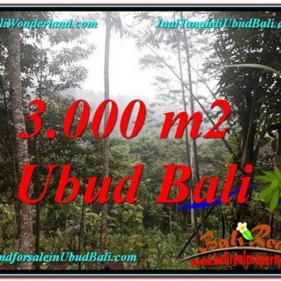 TANAH di UBUD DIJUAL MURAH Untuk INVESTASI TJUB617