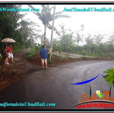 TANAH MURAH DIJUAL di UBUD BALI 3,000 m2 di Ubud Payangan