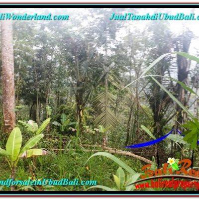 TANAH MURAH JUAL   UBUD 30 Are View Tebing