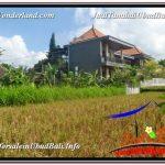 JUAL TANAH MURAH di UBUD BALI 1,000 m2 View Sawah lingkungan Villa