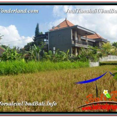 TANAH JUAL MURAH  UBUD 10 Are View Sawah lingkungan Villa