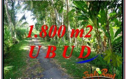 TANAH MURAH DIJUAL di UBUD Untuk INVESTASI TJUB597