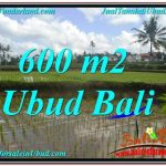 TANAH MURAH DIJUAL di UBUD 6 Are di Ubud Pejeng