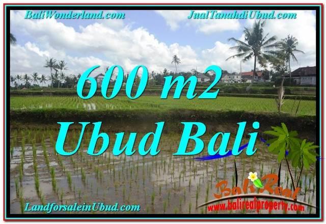 JUAL MURAH TANAH di UBUD BALI 600 m2  View sawah