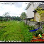 TANAH MURAH di UBUD BALI DIJUAL 20 Are View Sawah lingkungan Villa