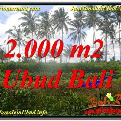 TANAH MURAH  di UBUD BALI DIJUAL 20 Are View Sungai  Kecil lingkungan Villa