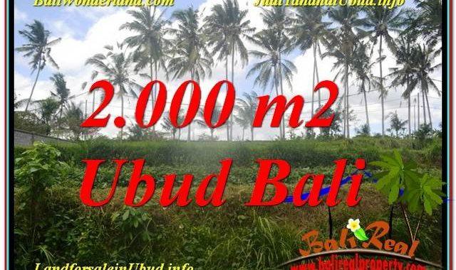 TANAH MURAH DIJUAL di UBUD BALI TJUB625