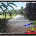 DIJUAL MURAH TANAH di UBUD BALI Untuk INVESTASI TJUB629