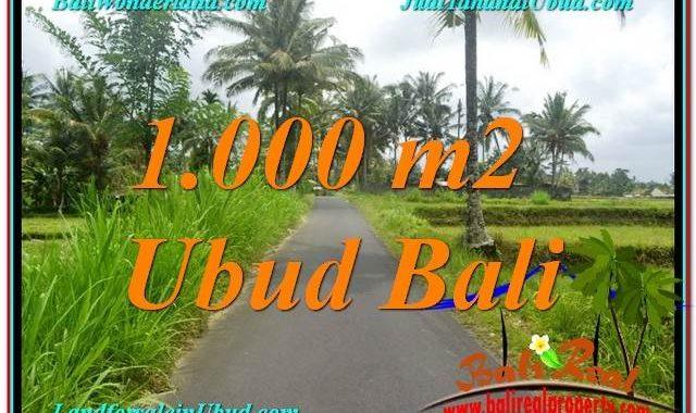 TANAH DIJUAL MURAH di UBUD 10 Are di Ubud Tampak Siring