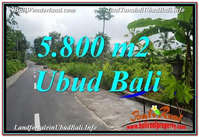 TANAH MURAH di UBUD BALI DIJUAL 58 Are View Hutan dan Sungai
