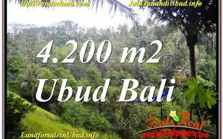 TANAH MURAH DIJUAL di UBUD BALI TJUB639