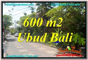 TANAH JUAL MURAH UBUD 600 m2 Kawasan Hotel, Villa dan Restaurant