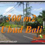 TANAH di UBUD BALI DIJUAL MURAH 3 Are di Sentral / Ubud Center