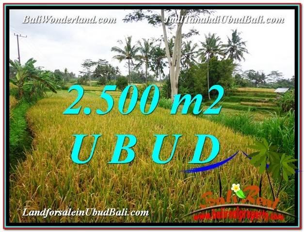 DIJUAL MURAH TANAH di UBUD BALI Untuk INVESTASI TJUB577