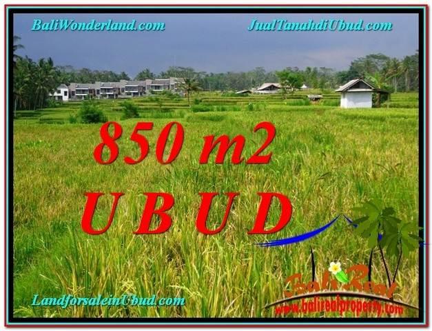 TANAH MURAH  di UBUD BALI DIJUAL 850 m2  View  Sawah link Villa