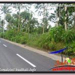 TANAH MURAH JUAL UBUD 5,800 m2 View Hutan dan Sungai
