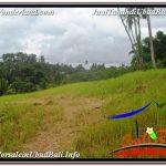 JUAL MURAH TANAH di UBUD 27 Are View Tebing dan Sungai
