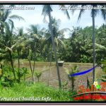 JUAL TANAH di UBUD 5,569 m2 View Sawah dan Sungai Kecil