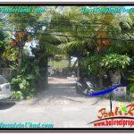JUAL TANAH MURAH di UBUD BALI Untuk INVESTASI TJUB644