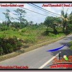 JUAL TANAH di UBUD BALI Untuk INVESTASI TJUB645