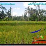 TANAH MURAH di UBUD BALI DIJUAL 1,000 m2 View Sawah dan Sungai Kecil, Link. Villa