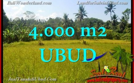 TANAH di UBUD BALI DIJUAL MURAH Untuk INVESTASI TJUB661